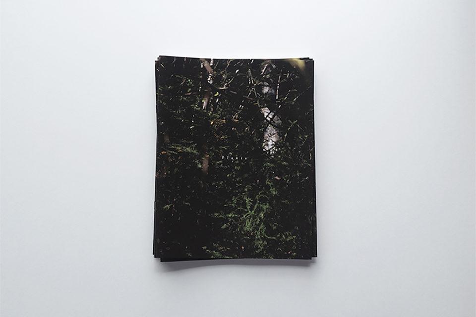 ZINE、Plants、takedamiho